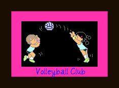 NRID_Volleyball_Club.jpeg